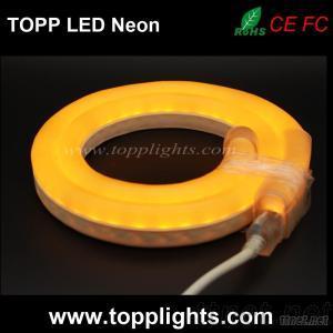 16X28Mm LED Neon Lights