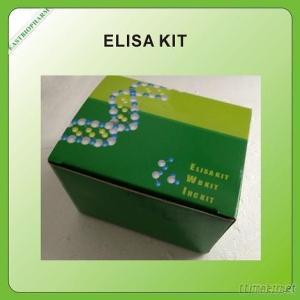 Human Ataxia Telangiectasia Mutated,ATM ELISA Kit