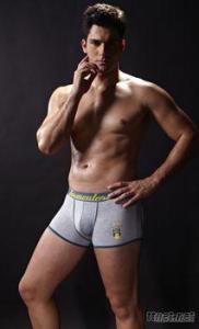 Men's Boxer