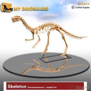 Paleontological Setting Dinosaur Fossil Skeleton