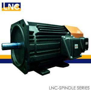 Spindle Motor