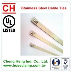 Cable Tie-SS Cable Tie