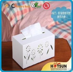 Custom Design Tissue Holder