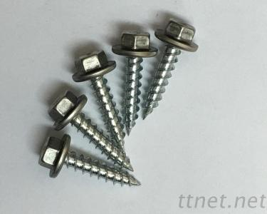 Stainless Steel Cap Self-Tapping Screw / Roofing Fasteners