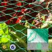Extruded Diamond Mesh Anti Bird Net