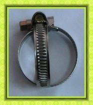 Tipo tubo flessibile Clampas della Germania dell'acciaio inossidabile