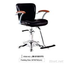 JM-81001F5 Professional Salon Styling Chair, Hair Salon Chair, Salon Stylish Hydraulic Chair, Beauty Chair