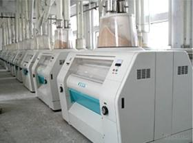 Small Wheat Flour Machinery, Complete Maize Flour Equipment