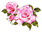 Embroidery Patch - Pink Rose