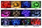LED串燈