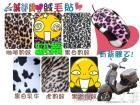 D06 大尺寸 韓國進口絨毛貼布, 豹紋系列