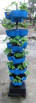 种菜立体植栽花盆