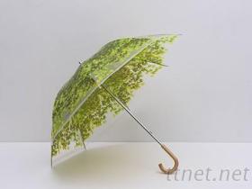 透明翠葉傘