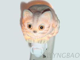 波麗小夜燈