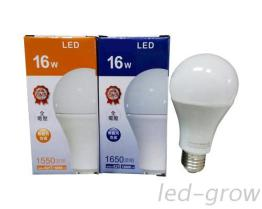 LED CNS燈泡