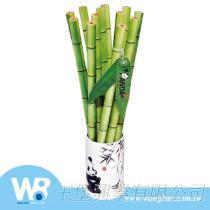 貓熊木頭竹子鉛筆12支入筆筒組
