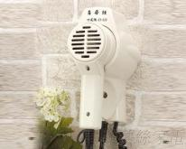 ED-520 菲梦丝挂壁式吹风机