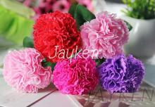 康乃馨花束, 精油香皂花