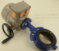 TYCO BIFFI F02电动头