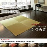 日本PU畳(地墊)