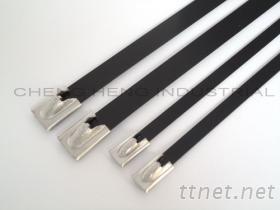 CBCT不锈钢滚珠式烤漆束带