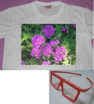3D立體眼鏡 (魔術T shirt)