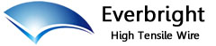 Everbright High Tensile Wire Company