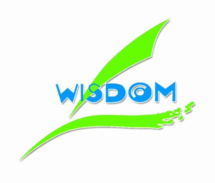 Qingdao Wisdom International Trading Co., LTD