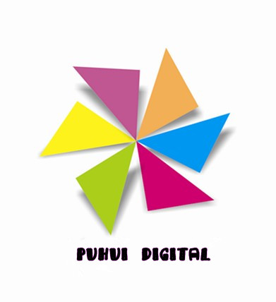 Puhui Digital Technology Shenzhen Co.' Ltd