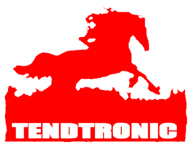 Tendtronic Corporation Limited