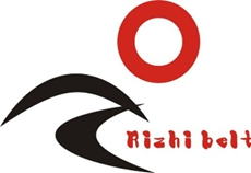 Rizhi Transmission Of Power System Shanghai Co., Ltd.