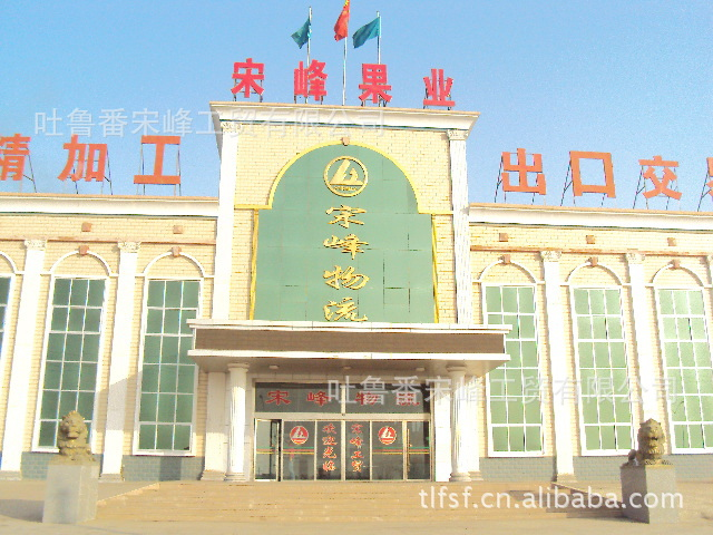 Turpan Songfeng Industry and Trade CO.,Ltd.