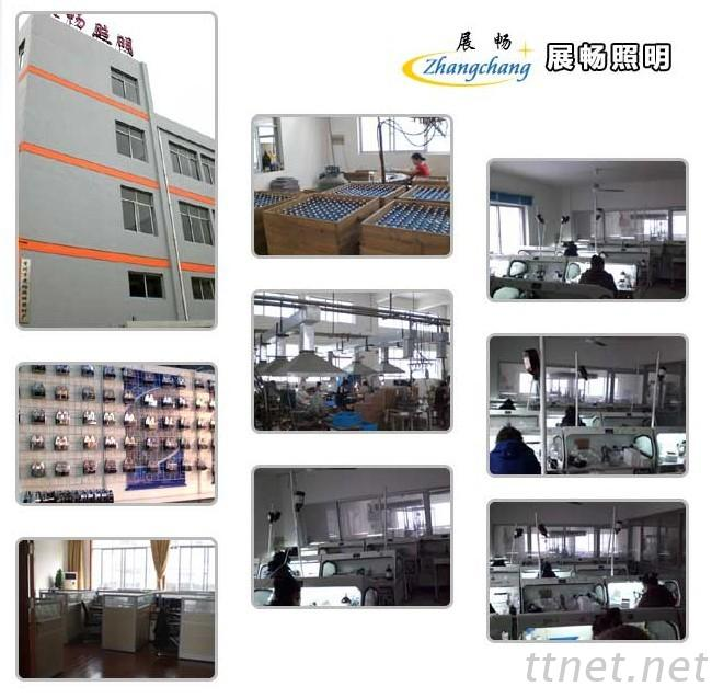 Changzhou Zhanchang Auto Electric Spare Parts Factory