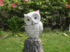 Owl Scolpture with base