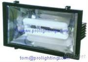 Energy Saving IP65 Induction Flood Light FG-7