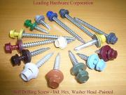Ind. Hex. Washer Head with Painted