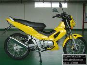 Motorcycle CUBs BSX110-X5