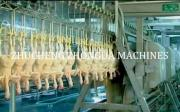 Poultry Butcher And Slaughter Production Line