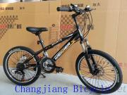 High End 20 Inch MTB Bike With Suspension Fork