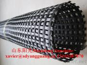 Warp-Knitting Polyester Uniaxial And Biaxial Geogrid