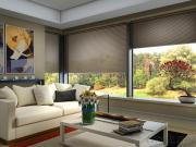 Motorized Cellular Blinds