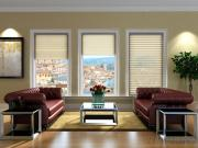 Motorized Sheer Horizontal Blinds