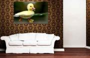 Animal Canvas Oil Painting For Sale Hand-Made Oil Painting On Canvas Cheap Online Hot Selling
