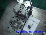 Plastic Injection Mold (HXL-M005)