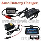 Electric Auto Battery Charger