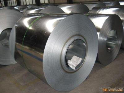 Anti-Finger Galvanzied Steel Coil