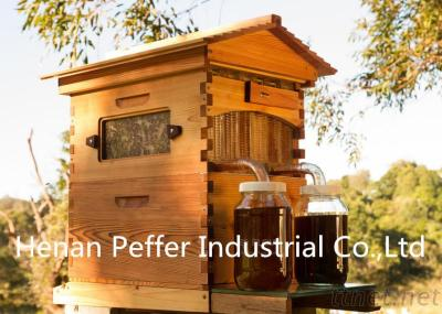 Food Grade Langstroth Australia Automatic Flow Bee Hive