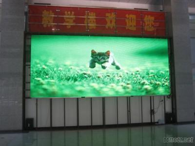 P12 Indoor Full Color LED Display (12mm Indoor Full Color LED Screen)