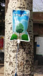PA/PE/PET Infusion Bag For Trees