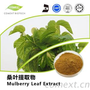 Mulberry Leaf Extract 1-DNJ 1%~10%